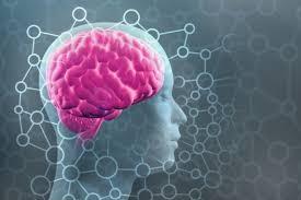 New Estimate Boosts the Human Brain's Memory Capacity 10-Fold